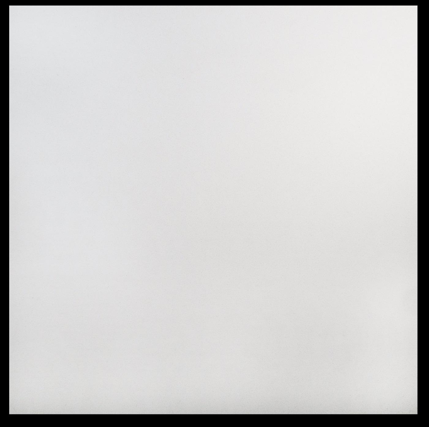 Polar White
